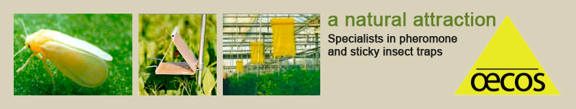 Oecos, specialists in pheromone and sticky insect traps