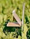Pea Moth Trap